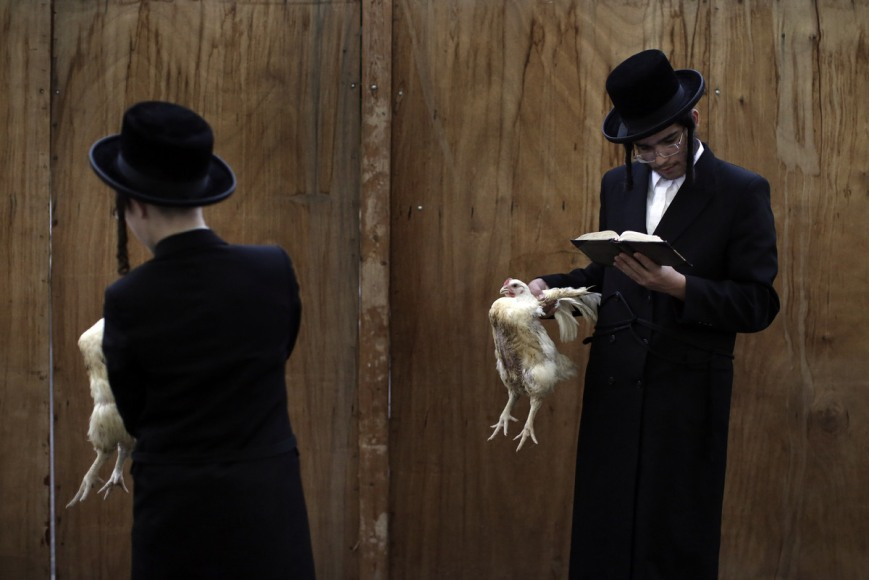 Chicken Sacrifice Yom Kippur