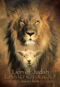 Lion Lamb (2)